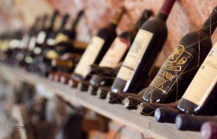 Selección de vinos en nuestra bodega